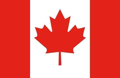 Canadá recruta profissionais de TI para trabalhar na cidade de Québec