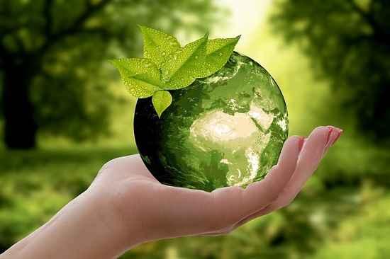 O RH e a sustentabilidade nas organizações