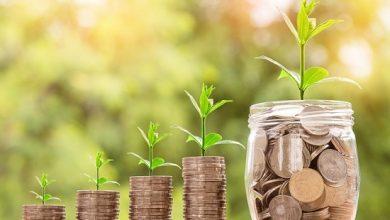 Saiba como investir seu dinheiro em 2019