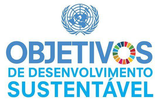 Pacto Global da ONU abre quatro vagas em São Paulo