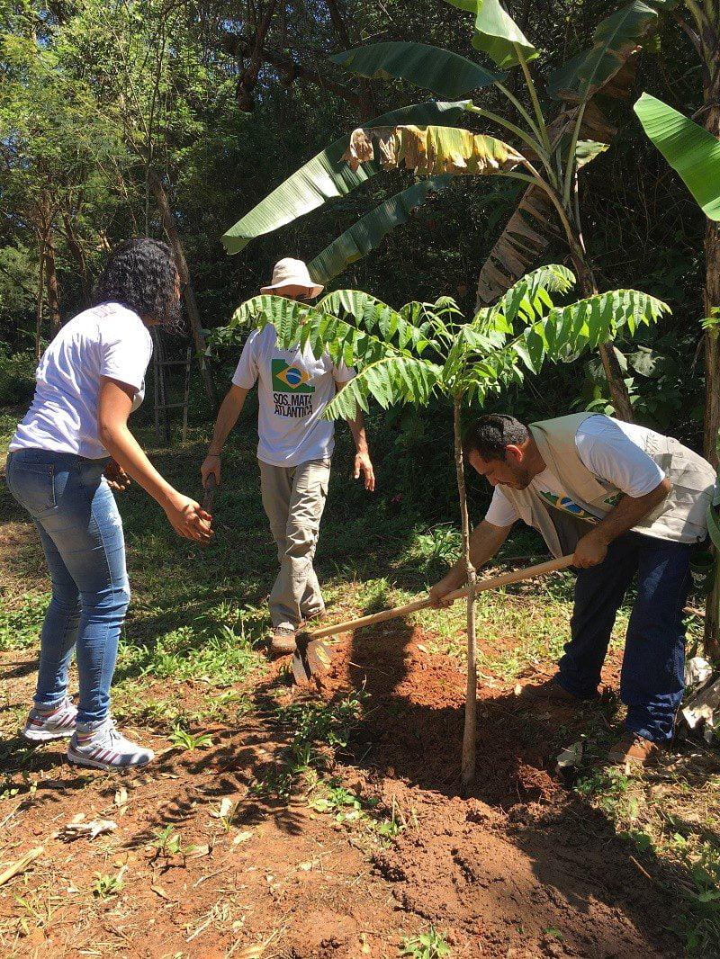 Coca-Cola FEMSA Brasil convida população para participar de plantio de árvores