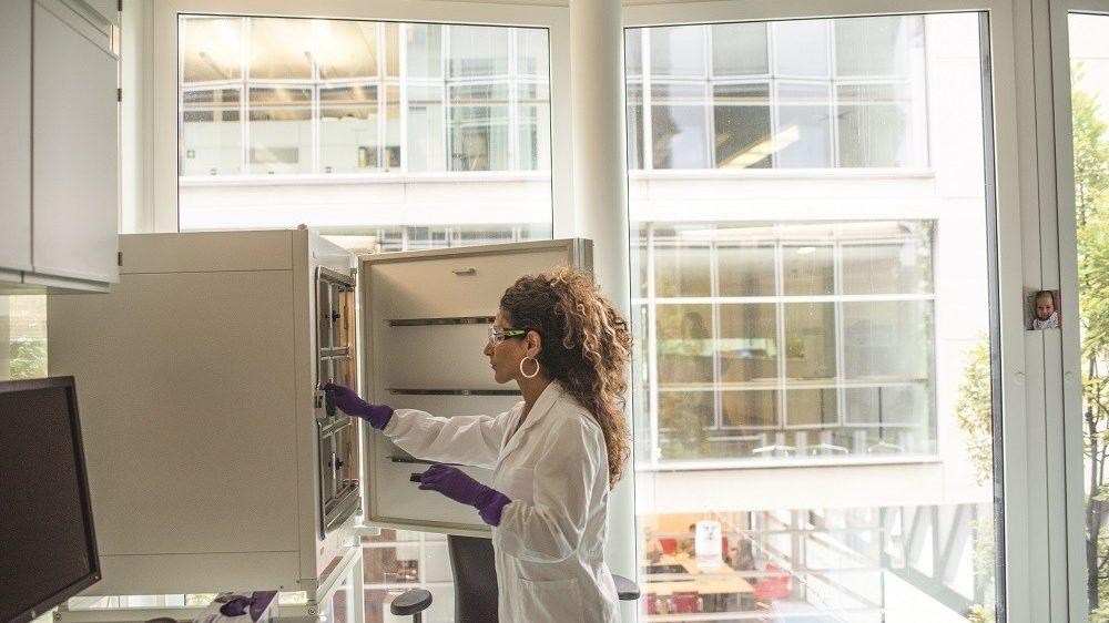 Novartis é uma das dez melhores empresas para mulheres trabalharem, segundo GPTW