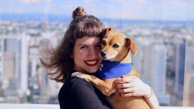Photo of Empresas investem em pet day para estimular satisfação dos colaboradores